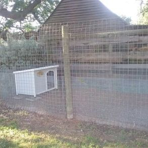 Secure dog enclosure