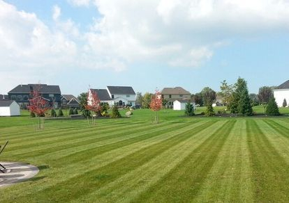 Lawn Care Tonawanda