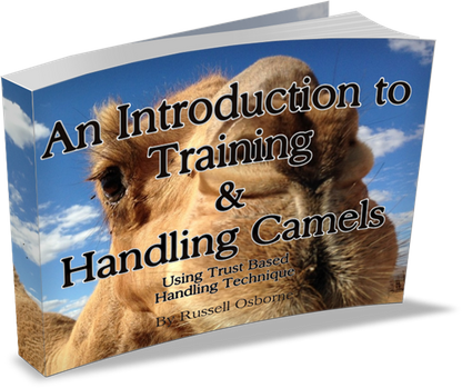 Introduction to Camel Handling and Training