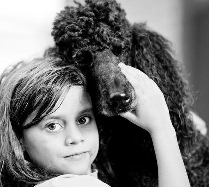 New Family Member Pet Adoption Dog