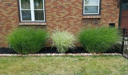 Yard Barber Lawn Service LLC Lanscaping