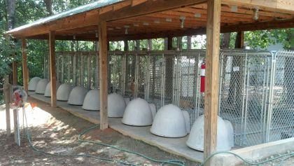 Quarantine Area-  10 kennels with shaded airing yard