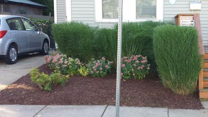 Landscaping service Yard barber lawn service LLC