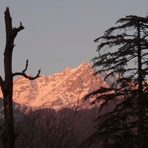 "src=""australian womens travel.jpg alt=womens tours,snow on mountain top at sunset, mcleodganj , India"