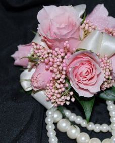 pink spray rose wrist corsage