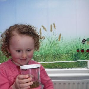 Wildwood Tuition and Childcare in Stafford