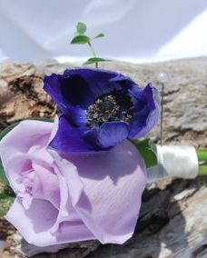 Purple rose with purple anemone boutonniere