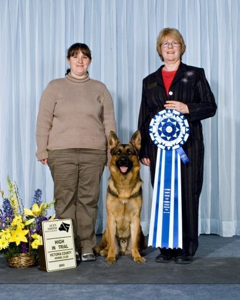 Maverick #3 2007 2008 obedience dog CKC