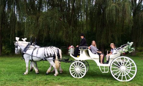Elgant horse-drawn Transportation.  Creating Unique memories that will last a lifetime