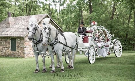 Cinderella Carriage for Sweet sixteens, quinceaneras, parties, Valentines day rides, more