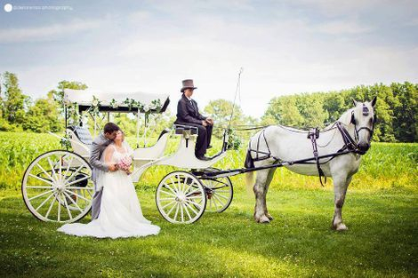 Vis-a-Vis Horse Drawn Wedding Carriage