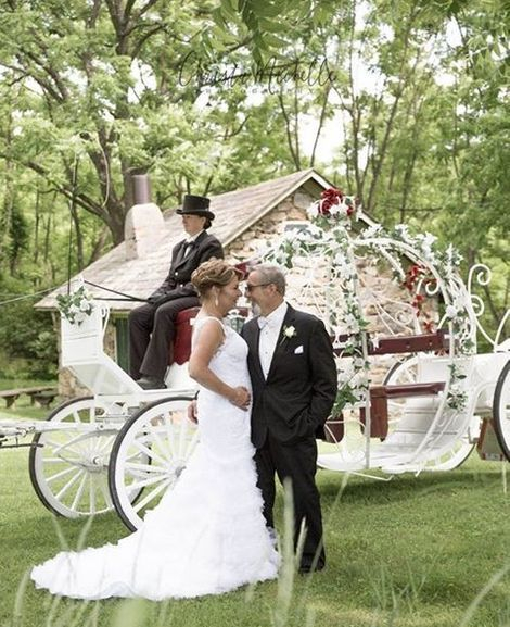 Weddings, draft horses, white carriage horses