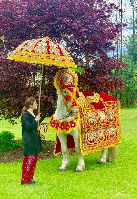 south asian wedding horse baraat