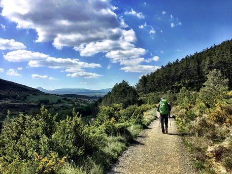 Camino de Santiago (French Route) between Zubiri and Pamplona