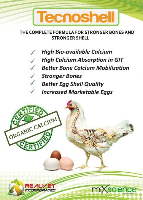 Tecnoshell is a scientifically proven multi-component formula for stronger bones and stronger shell.