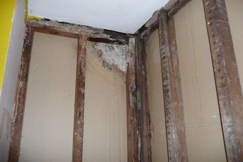 Stripped off rotten bathroom walls
