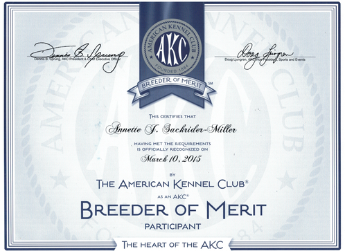Breeder of Merit Award AKC for Excellence in Breeding Dogs