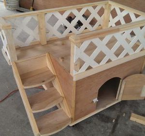 txsc red oak 2 story small dog house