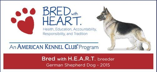 Breeder of Merit Awarded for Educating the Public and the Breed