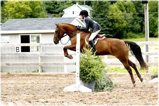 Knowlton Ridge Equestrian Center.  August 2012