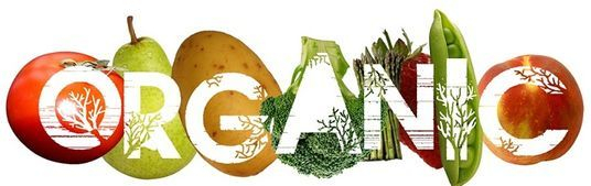 Understanding the difference between organic and natural