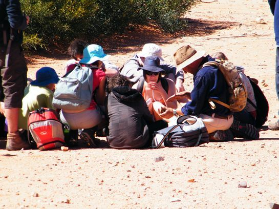 Discovering the Desert. Groups learning about the desert environment. Outback Australian Camels