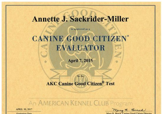 Canine Good Citizen Character & Temperament Elevator Certificate