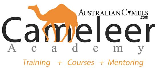 Cameleer Academy Logo