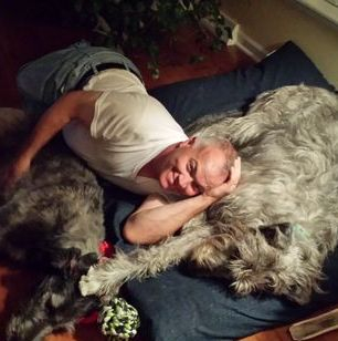 Irish Wolfhound - The Inseparable Isadora and Molly