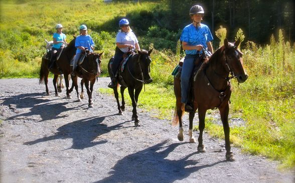 lehigh valley trail rides guided horse rentals