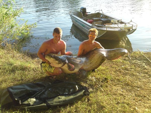 Guided Catfishing tours Silure, Som, Waller, Wesser