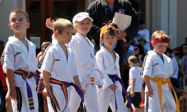 Karate Parade Image