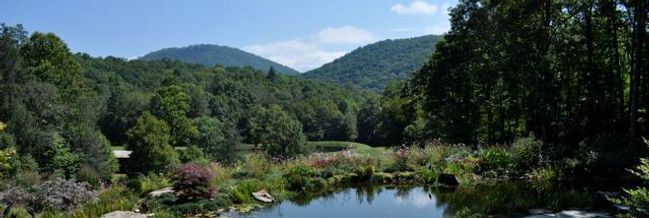 beautiful custom landscape in Western North Carolina with pond