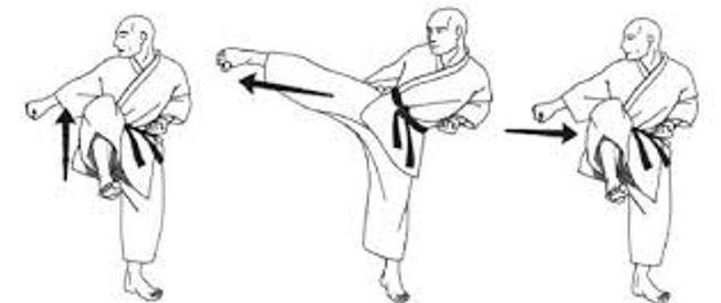 seido timaru karate