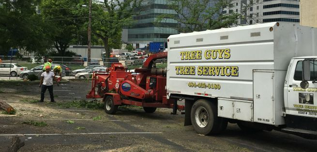 Tree Guys Tree Service chipping and finishing up a  job in Glen Mills PA.