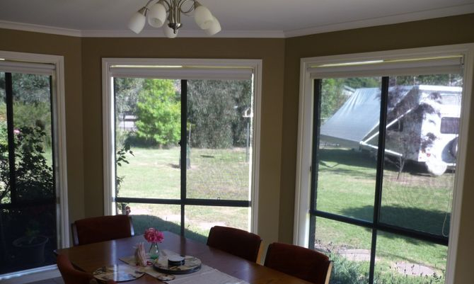 Charcoal Screen day blinds