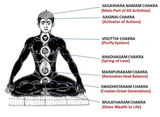 It is important to know and function Six Aadhara Chakras for Wellness of Human Life. (Sivamathiyin Jeevayogam)