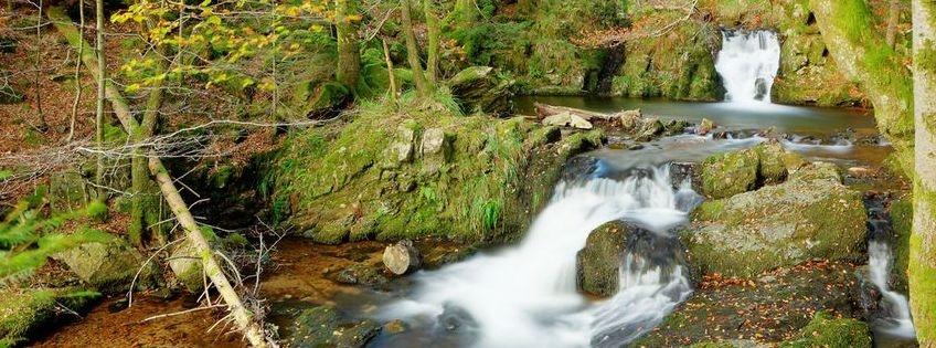 Flowing peace like water