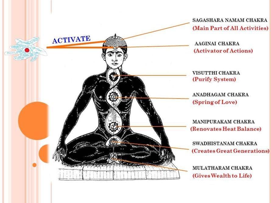 Abirudhu Neuron contact with two Chakras - Sagashara Namam & Aaginai. (Sivamathiyin Jeevayoga Jothimayam)
