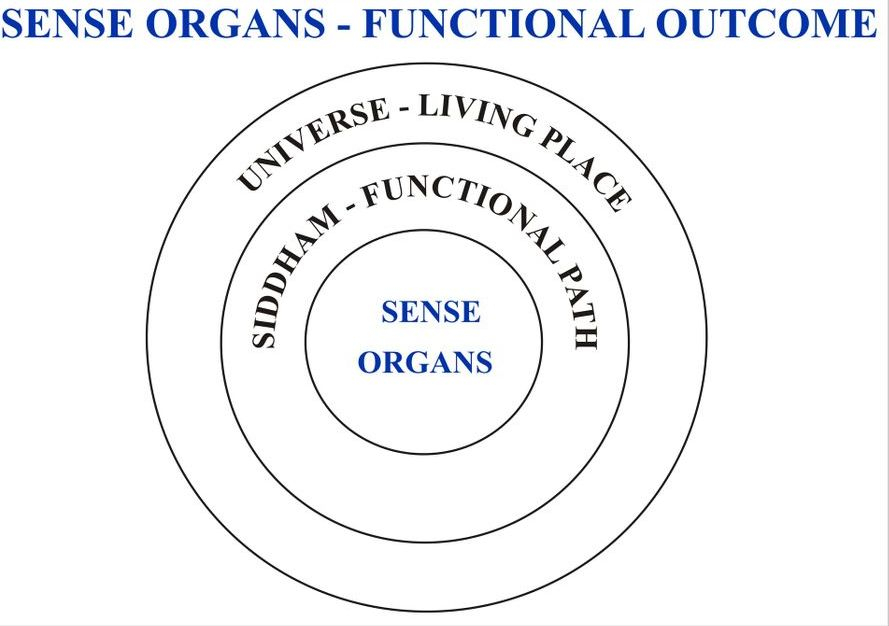 Sense Organs functions' development sets as comitment for Life's best, So we can see improvement while activating Sense Organ's functions properly without making wound. (Sivamathiyin Jeevayogam)