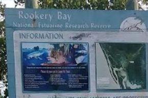 paddleboard tour rookerybay