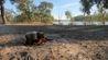 camp out bush fishing